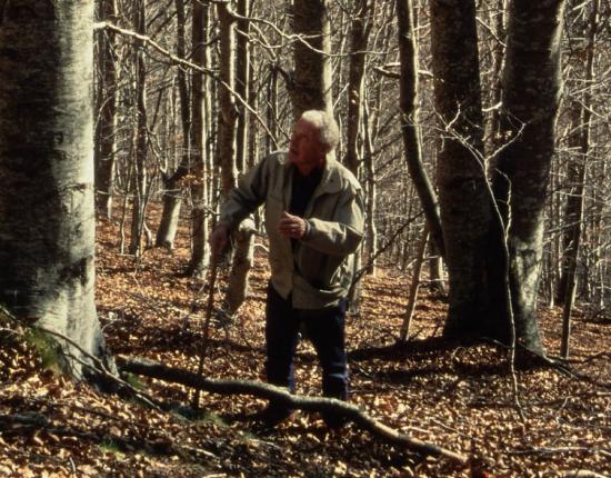 Portrait en pied d'Alain Taurinya sur le site de la forge de Riu Fred