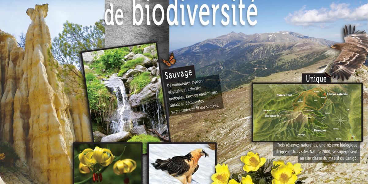 Panneau d'expo Biodiversité / SMCGS