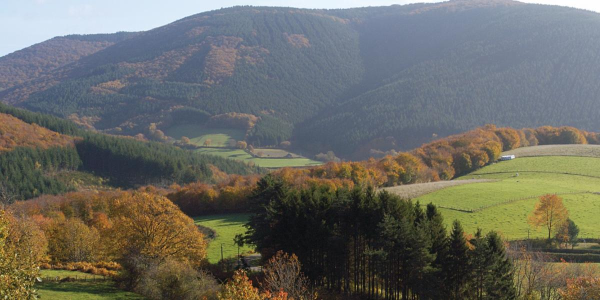 Grand Site de France de Bibracte / BIBRACTE