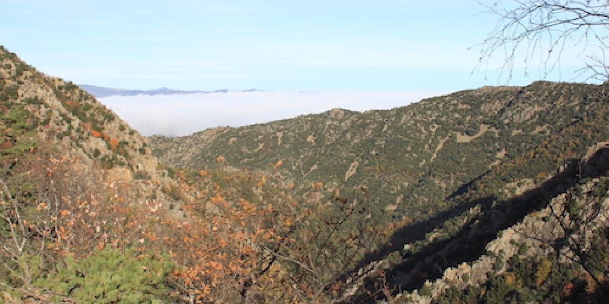 L'automne dans la vallée du Llech / O. DECOMBAS