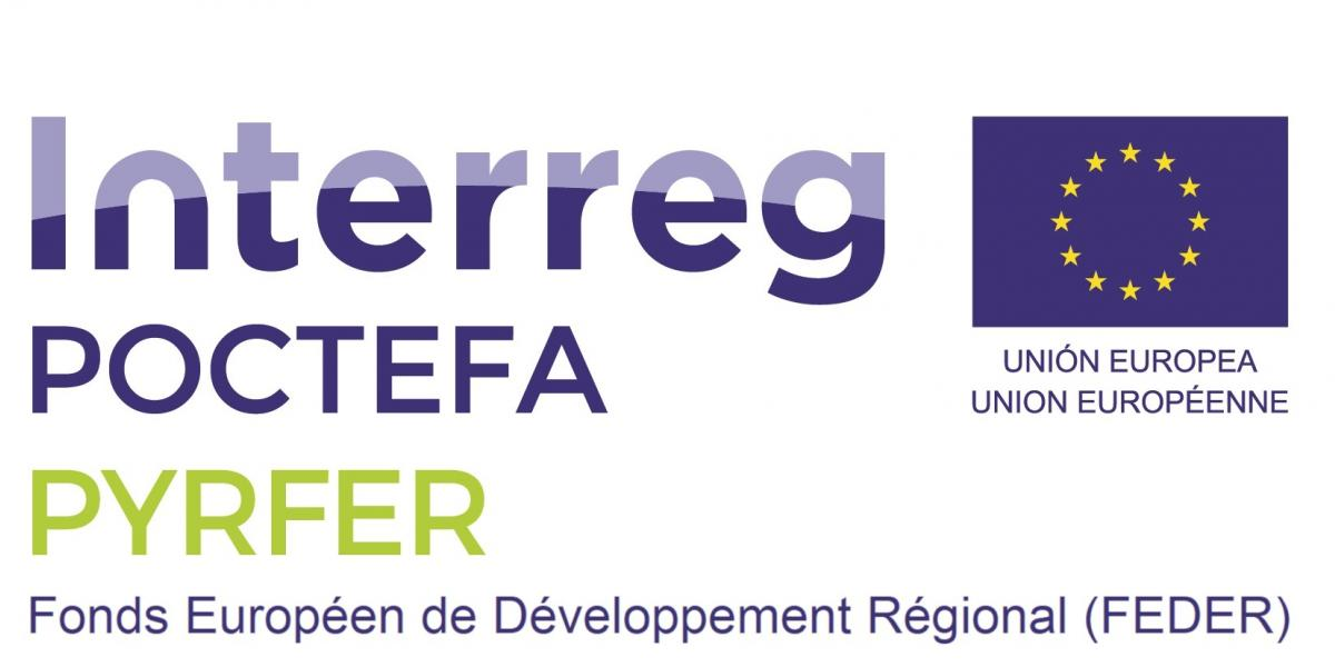 Logo Poctefa-Pyrfer